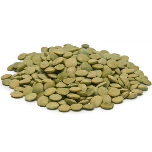 Чечевица зелёная (для проращивания)